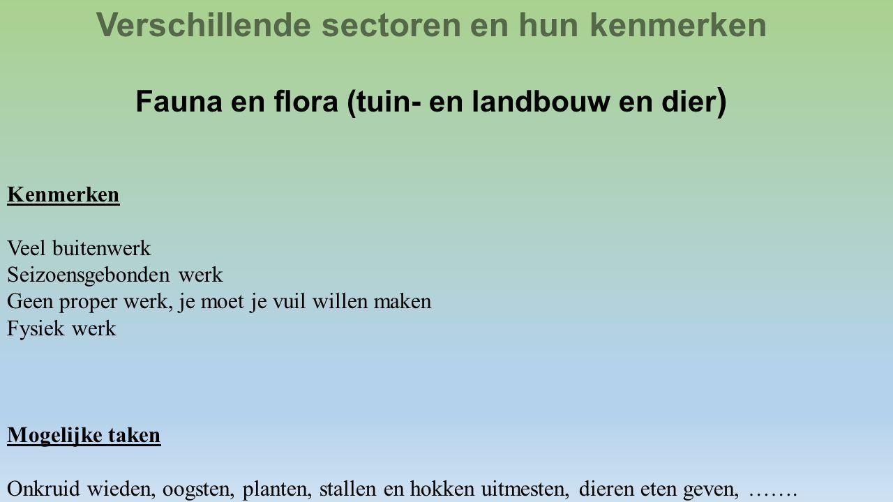 Verschillende sectoren en hun kenmerken Fauna en flora (tuin- en landbouw en dier ) Kenmerken Veel buitenwerk Seizoensgebonden werk Geen proper werk,