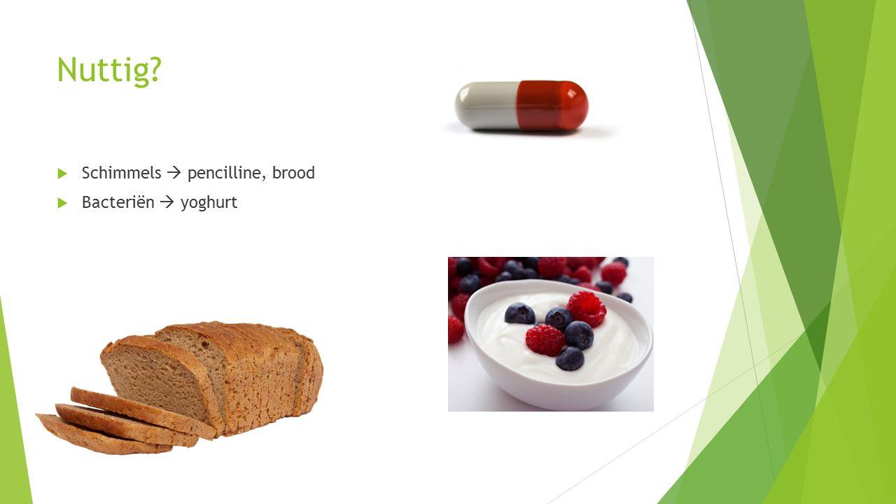 Nuttig?  Schimmels  pencilline, brood  Bacteriën  yoghurt