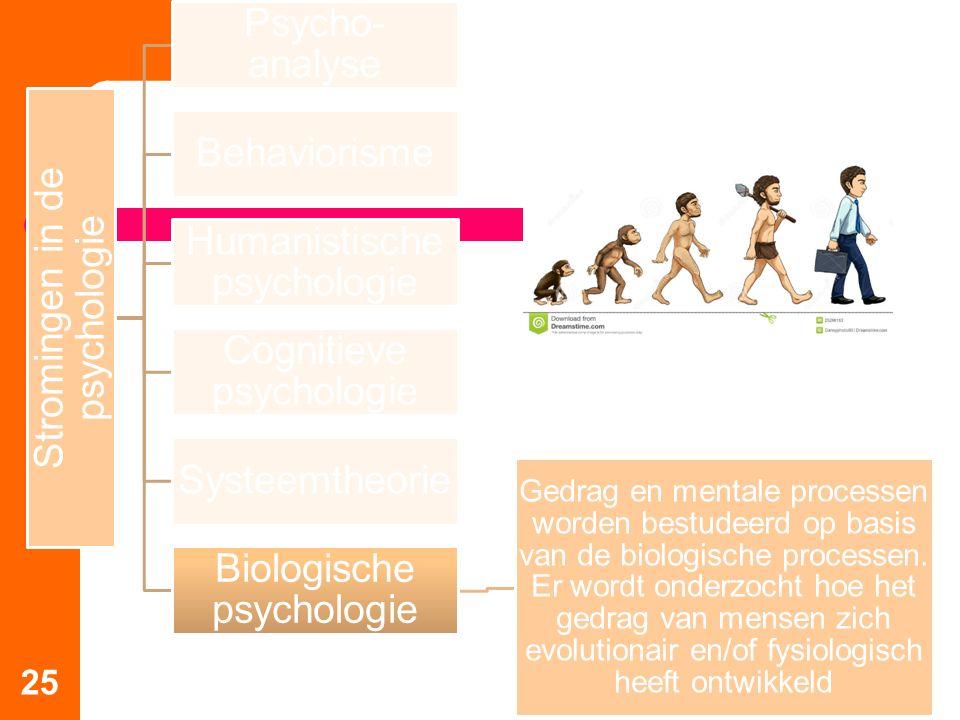 25 Stromingen in de psychologie Psycho-analyse Behaviorisme Humanistische psychologie Cognitieve psychologie Systeemtheorie Biologische psychologie Ge