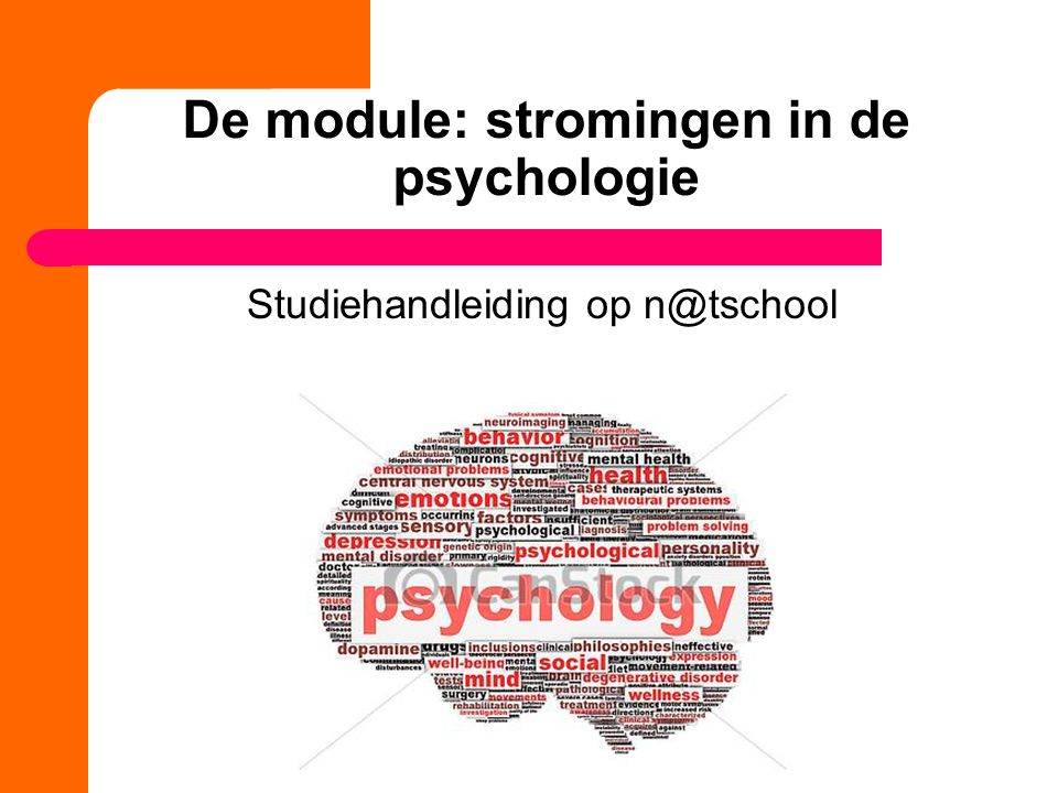 De module: stromingen in de psychologie Studiehandleiding op n@tschool