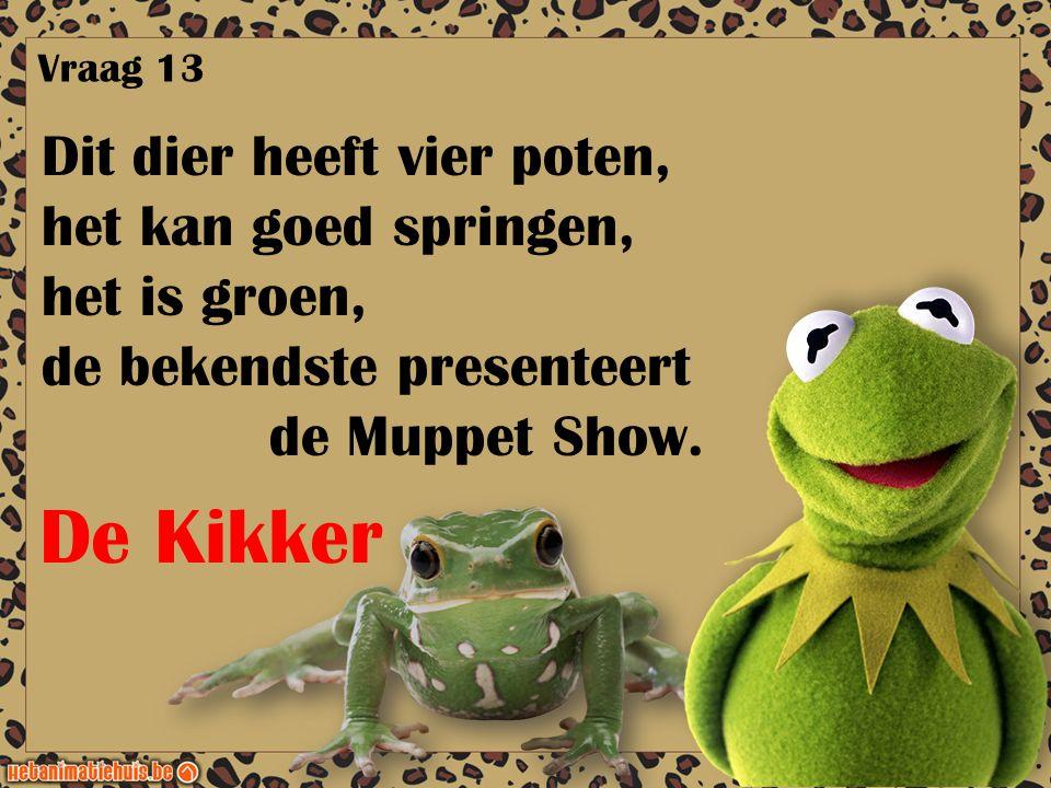 Dit dier heeft vier poten, het kan goed springen, het is groen, de bekendste presenteert de Muppet Show. Vraag 13 De Kikker