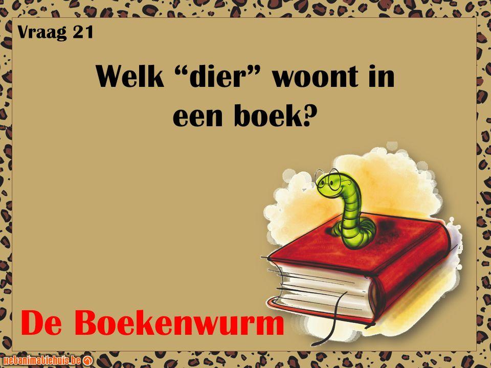 """Welk """"dier"""" woont in een boek? Vraag 21 De Boekenwurm"""