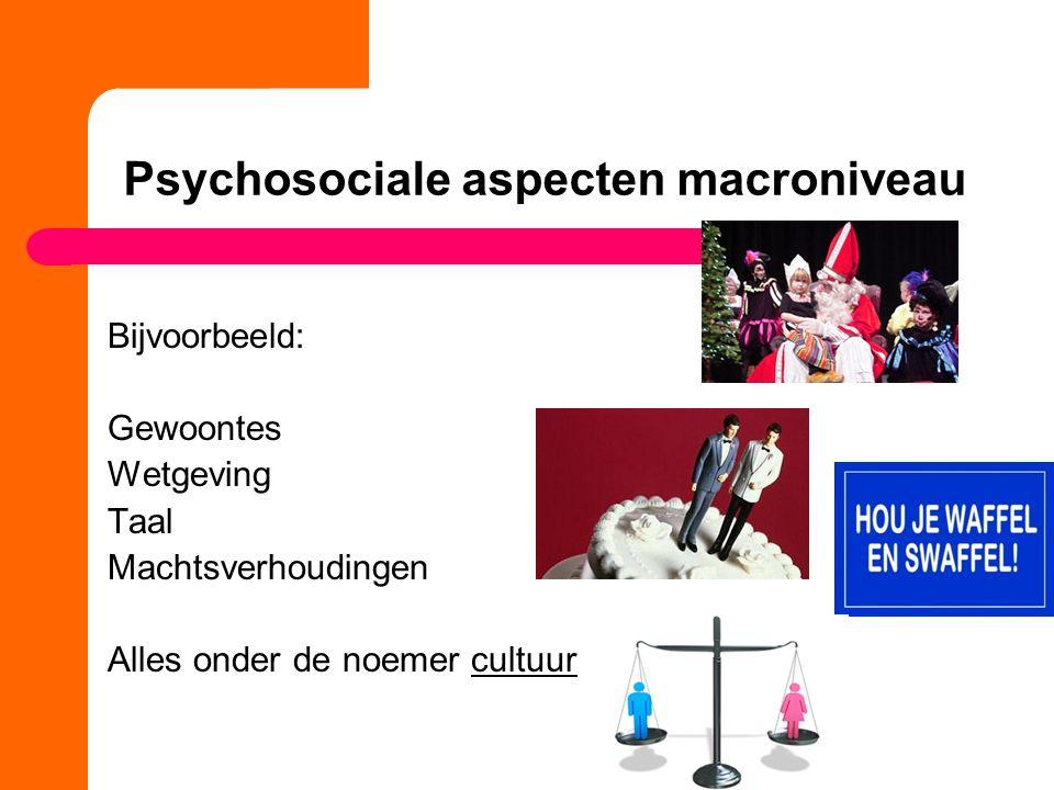 Psychosociale aspecten macroniveau Bijvoorbeeld: Gewoontes Wetgeving Taal Machtsverhoudingen Alles onder de noemer cultuur