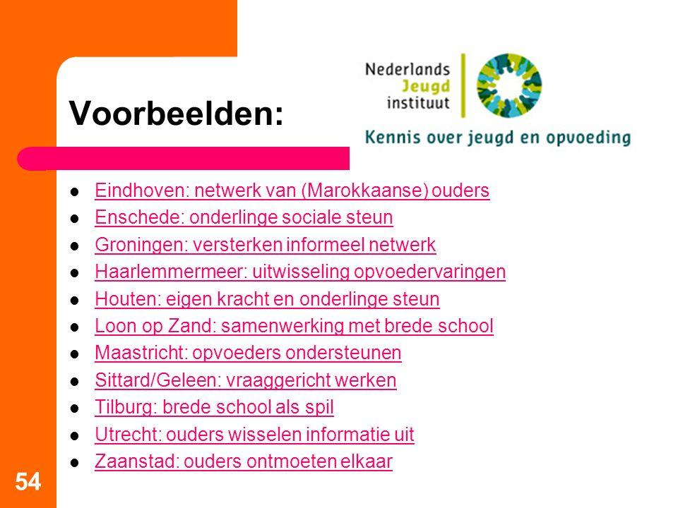 Voorbeelden: Eindhoven: netwerk van (Marokkaanse) ouders Enschede: onderlinge sociale steun Groningen: versterken informeel netwerk Haarlemmermeer: ui