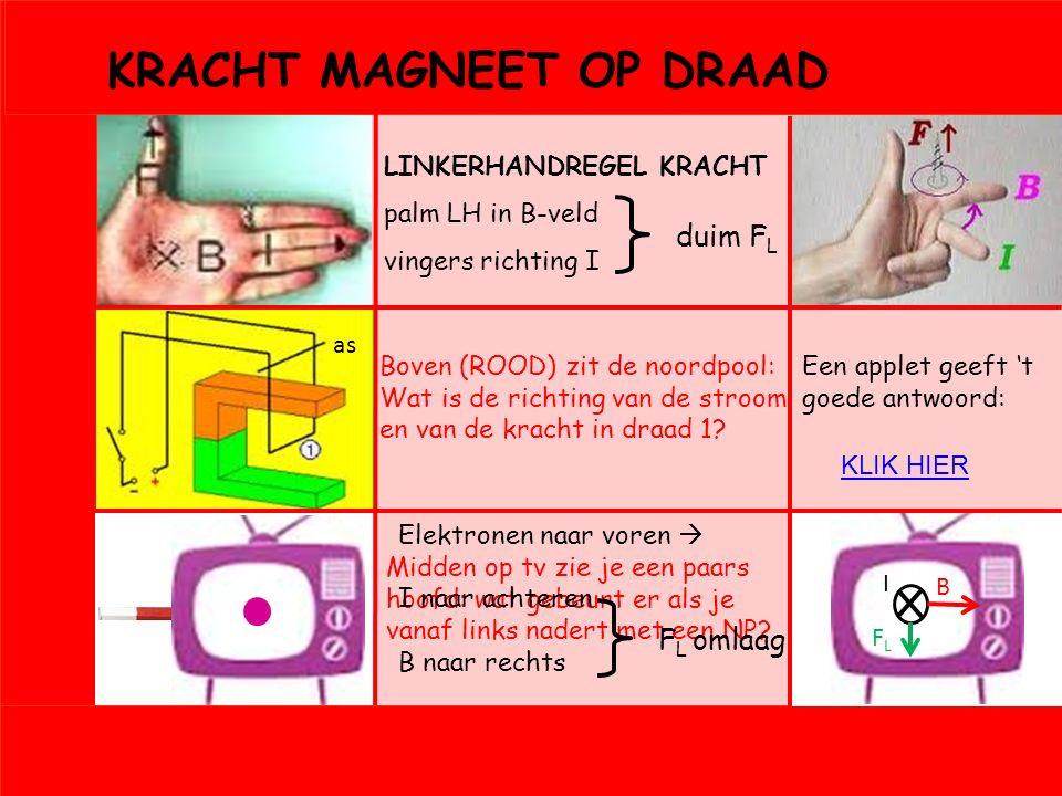 Vbn 4: DRAAIENDE MAGNEET EN SPOEL Inductie: bewegende magneet voor spoel  elektriciteit E kin  E el +Q A SNELLER BEWEGEN B MAGNEET OMDRAAIEN B omdraaien  U klapt om oppervlak pieken constant t halveert  U verdubbelt