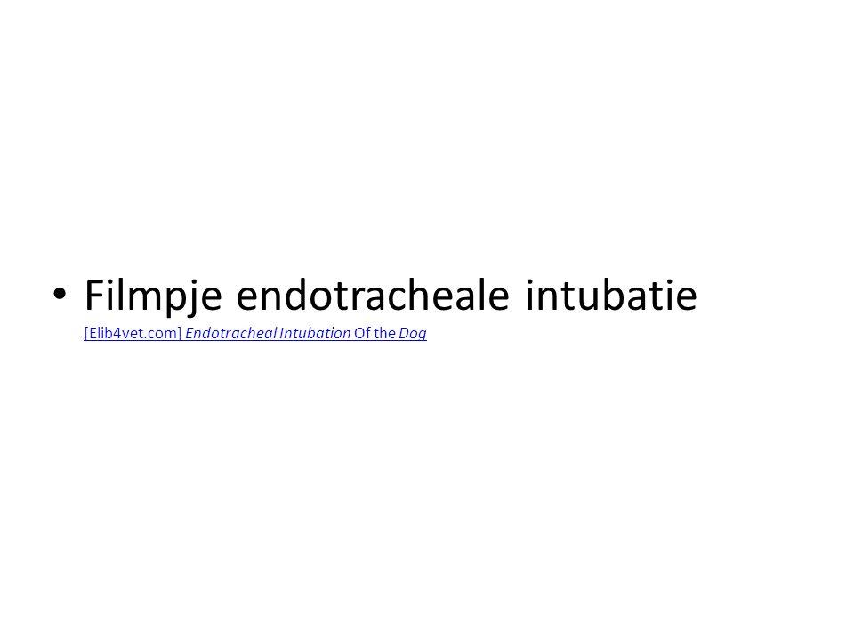 Filmpje endotracheale intubatie [Elib4vet.com] Endotracheal Intubation Of the Dog [Elib4vet.com] Endotracheal Intubation Of the Dog