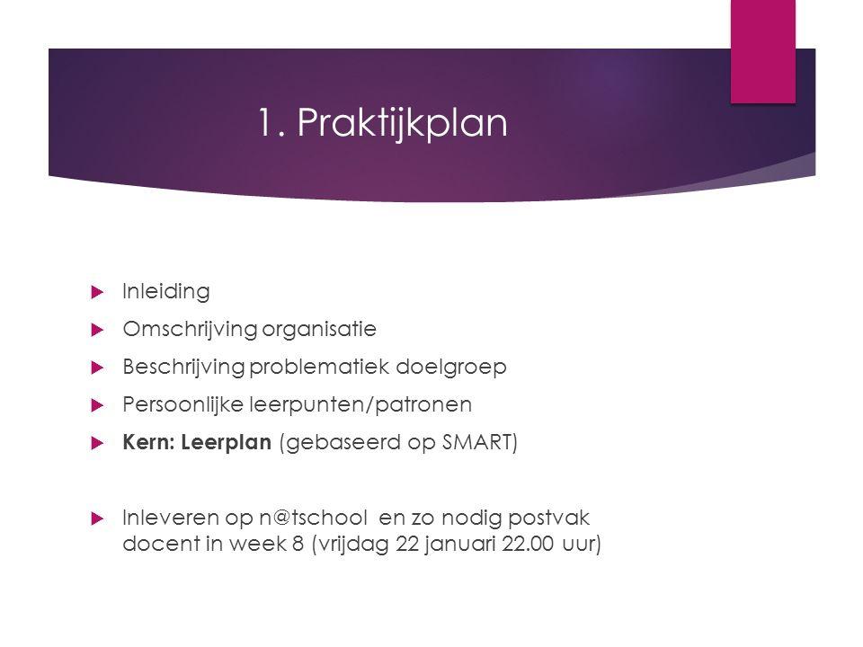 1. Praktijkplan  Inleiding  Omschrijving organisatie  Beschrijving problematiek doelgroep  Persoonlijke leerpunten/patronen  Kern: Leerplan (geba
