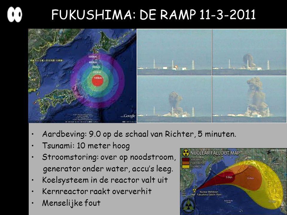 Aardbeving: 9.0 op de schaal van Richter, 5 minuten. Tsunami: 10 meter hoog Stroomstoring: over op noodstroom, generator onder water, accu's leeg. Koe