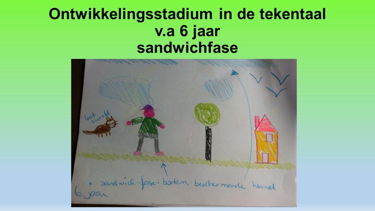 Ontwikkelingsstadium in de tekentaal v.a 6 jaar sandwichfase