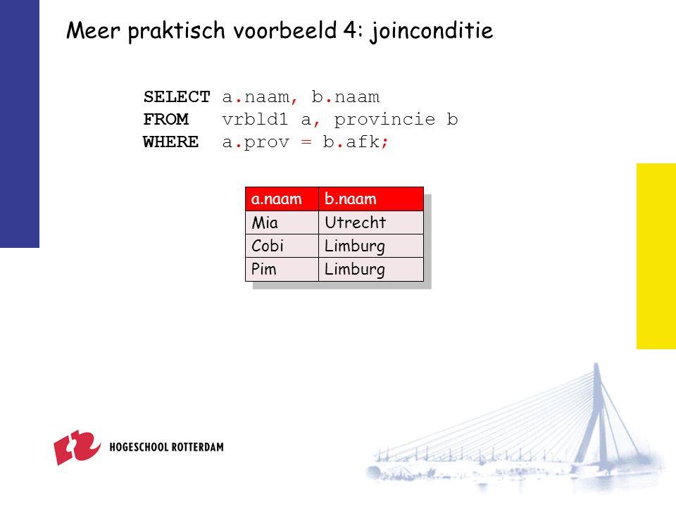 Meer praktisch voorbeeld 4: joinconditie SELECT a.naam, b.naam FROM vrbld1 a, provincie b WHERE a.prov = b.afk; a.naamb.naam MiaUtrecht CobiLimburg PimLimburg