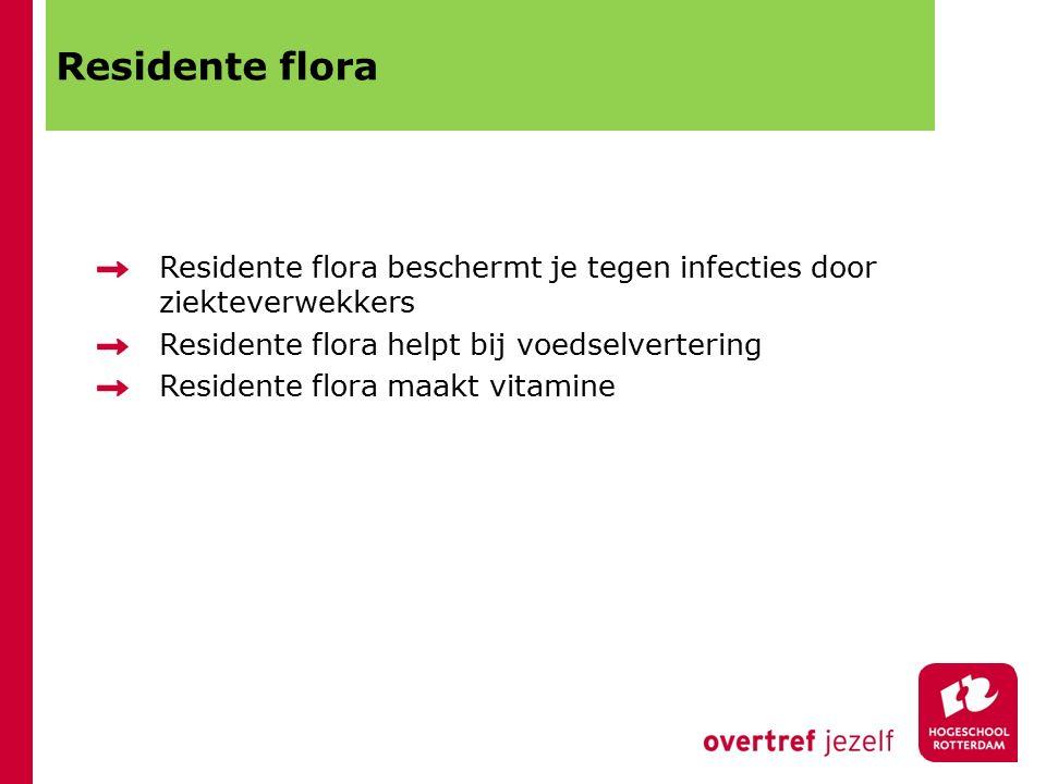 Residente flora Residente flora beschermt je tegen infecties door ziekteverwekkers Residente flora helpt bij voedselvertering Residente flora maakt vitamine