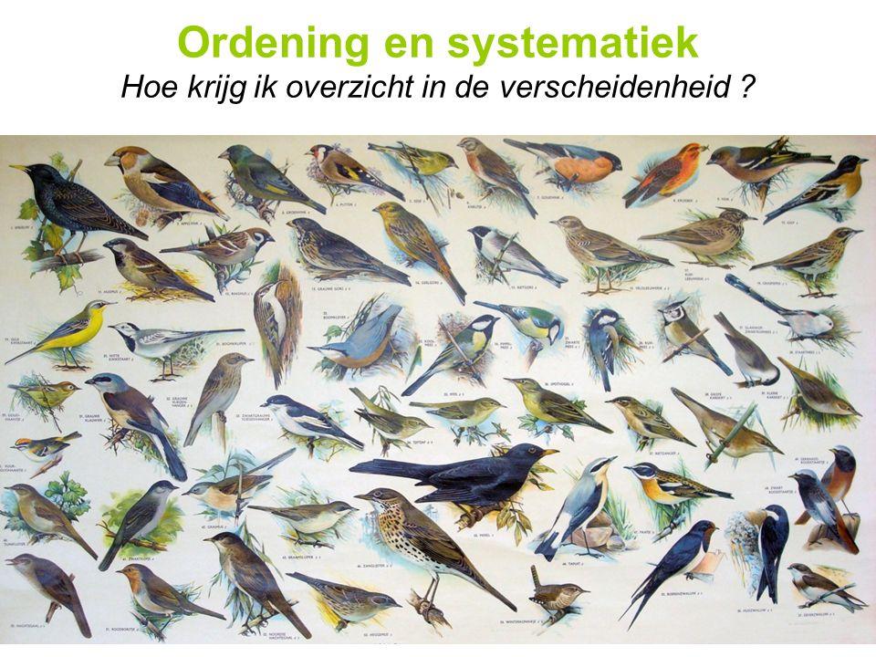 Ordening en systematiek Hoe krijg ik overzicht in de verscheidenheid ?