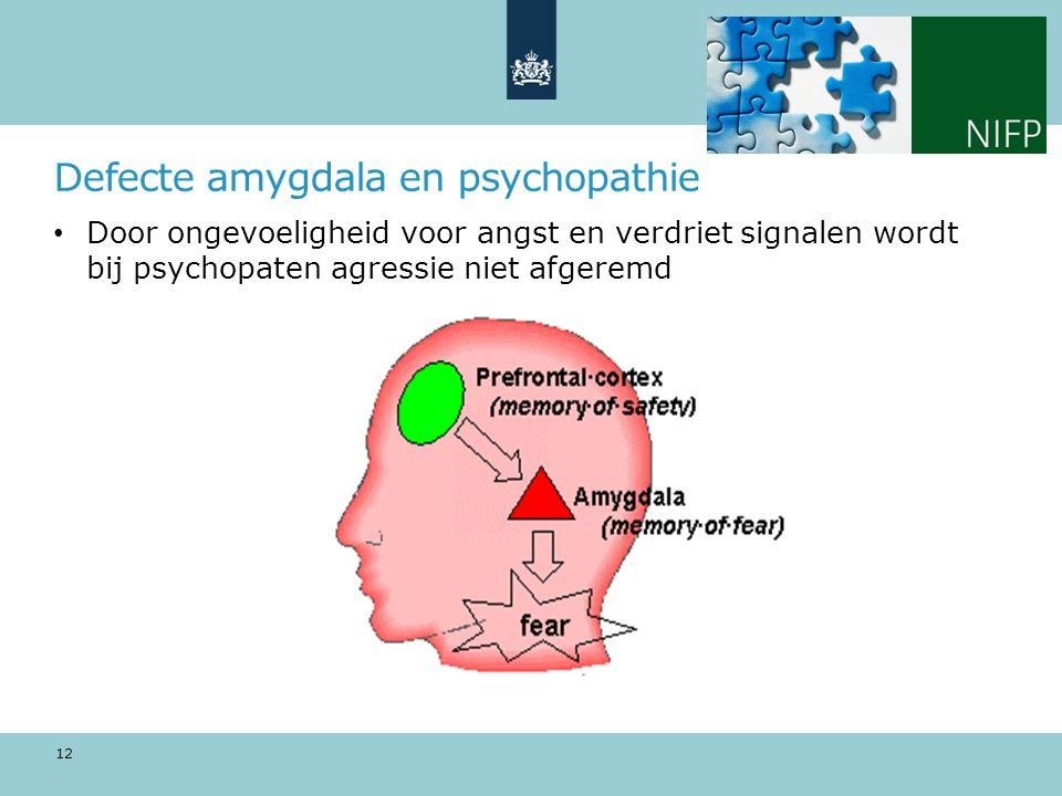 Defecte amygdala en psychopathie Door ongevoeligheid voor angst en verdriet signalen wordt bij psychopaten agressie niet afgeremd 12