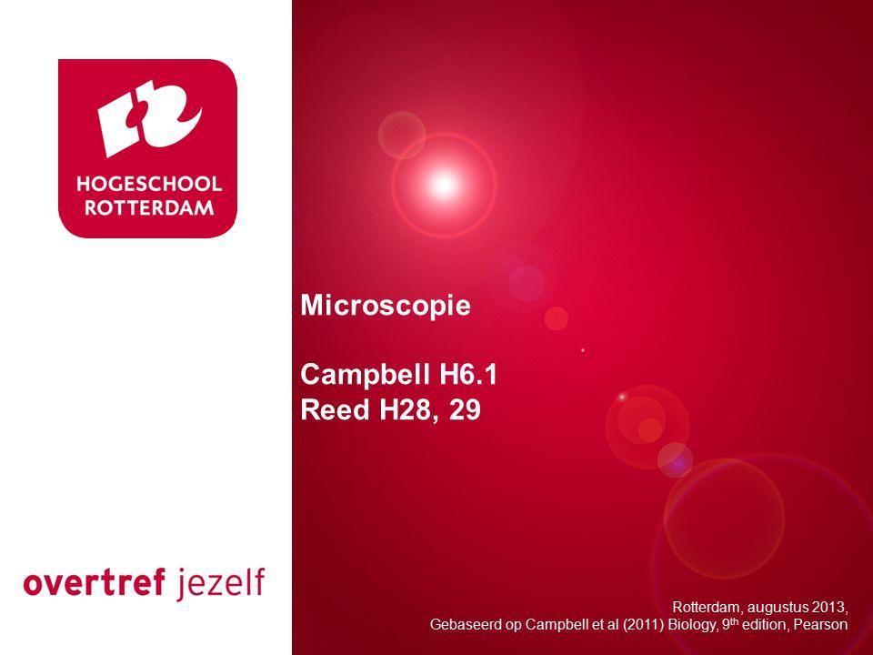 Opbouw van de les Waarom microscopie.