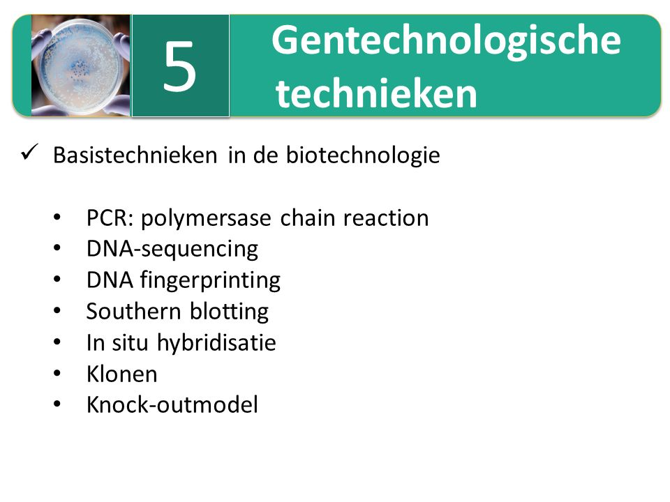 5.1 Polymerase chain reaction (PCR) Repetitief aanmaken van een welbepaald DNA-fragment Een specifiek gekozen DNA-fragment kan massaal vermenigvuldigd worden (in PCR-cycler) De aanmaak van de complementaire ketens start telkens vanaf een primer (korte stukjes enkelstrengs-DNA) De techniek verloopt in 3 opeenvolgende temperatuurcycli: denaturatierenaturatiepolymerisatie ± 95 °C scheiden van DNA- strengen 40-60 °C aanhechten van primers ± 72 °C aanmaak nieuwe DNA-streng