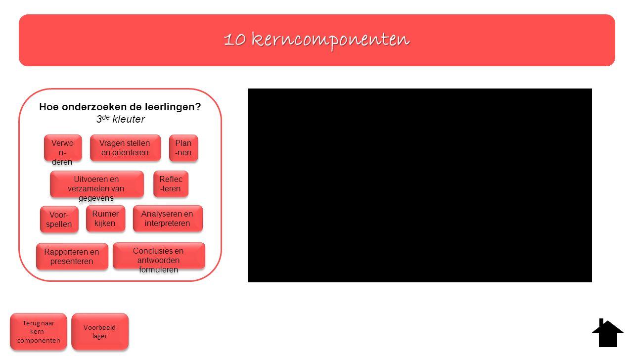 10 kerncomponenten Hoe onderzoeken de leerlingen.