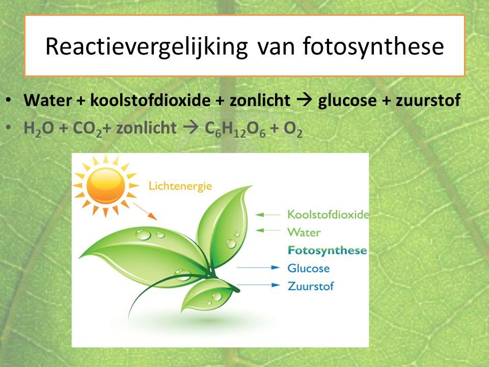 Reactievergelijking van fotosynthese Water + koolstofdioxide + zonlicht  glucose + zuurstof H 2 O + CO 2 + zonlicht  C 6 H 12 O 6 + O 2