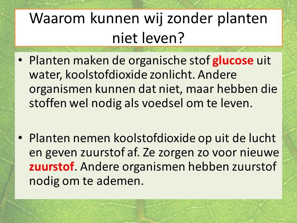 Waarom kunnen wij zonder planten niet leven? Planten maken de organische stof glucose uit water, koolstofdioxide zonlicht. Andere organismen kunnen da