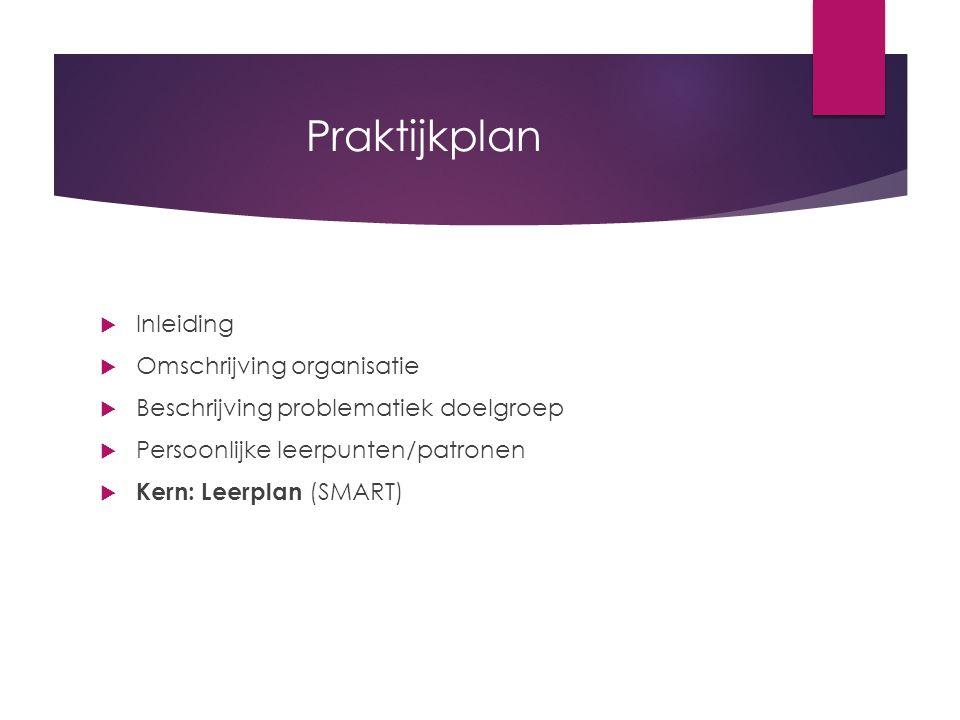 Praktijkplan  Inleiding  Omschrijving organisatie  Beschrijving problematiek doelgroep  Persoonlijke leerpunten/patronen  Kern: Leerplan (SMART)