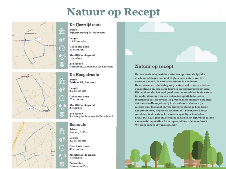 Conclusie Natuur als ondersteuning Geen DBC's Medicatie wisselend Toegangkelijkheid natuur als eis uit de GGZ