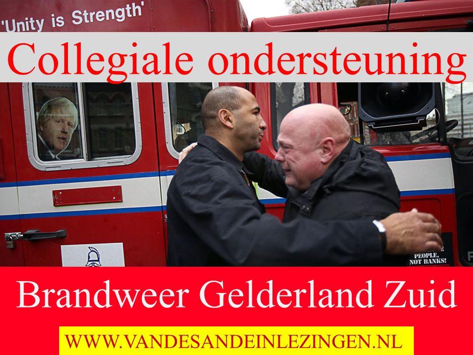 Brandweer Gelderland Zuid Ochten 19 November 2015 WWW.VANDESANDEINLEZINGEN.NL Collegiale ondersteuning