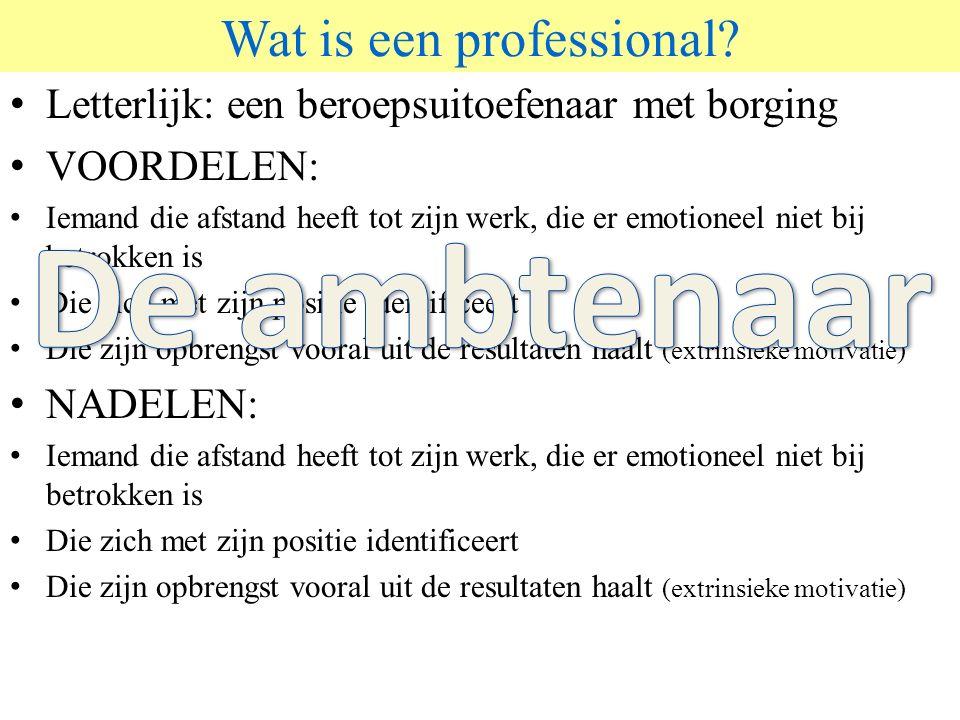© 2006 JP van de Sande RuG Wat is een professional.
