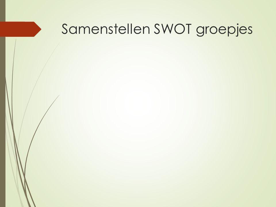 Samenstellen SWOT groepjes