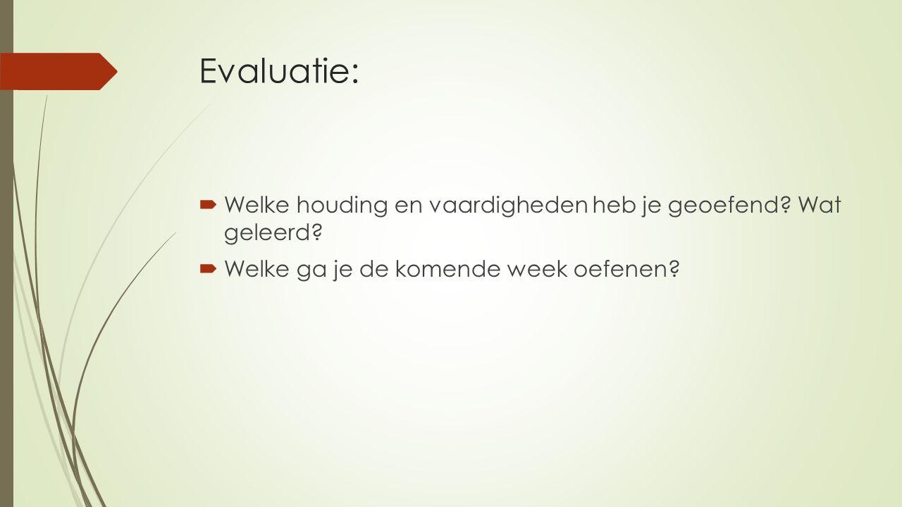 Evaluatie:  Welke houding en vaardigheden heb je geoefend.