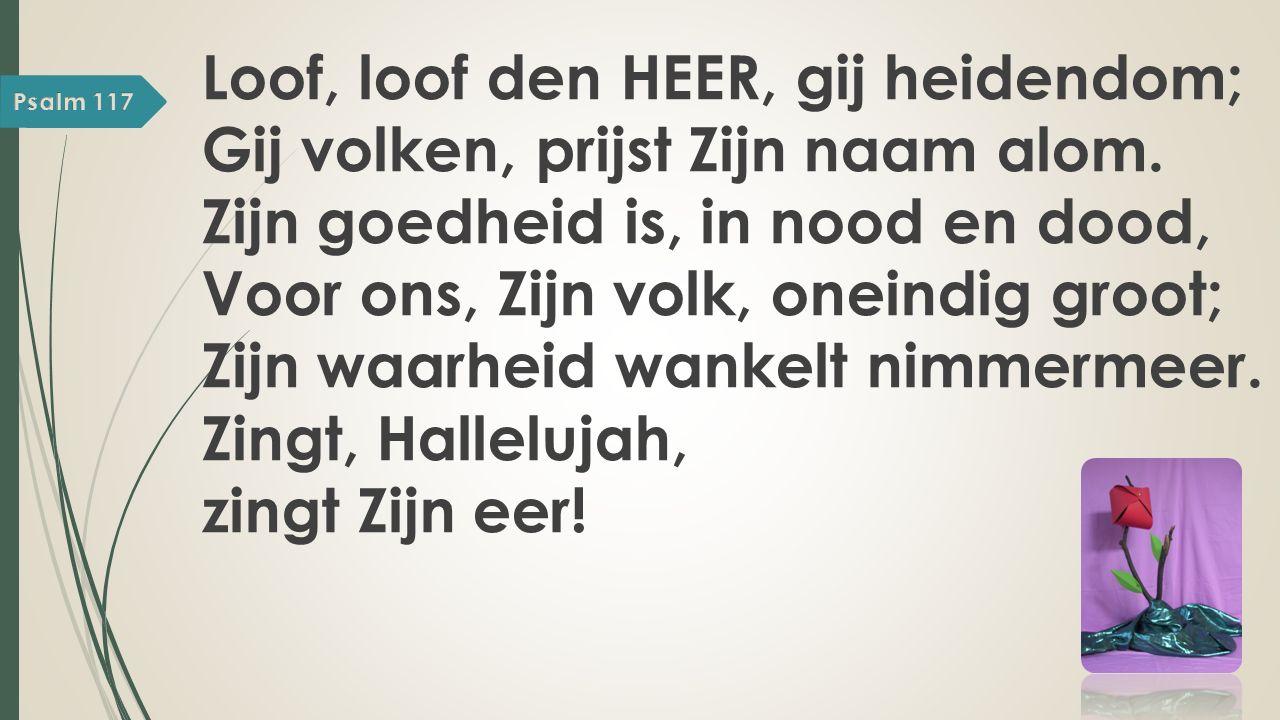 Loof, loof den HEER, gij heidendom; Gij volken, prijst Zijn naam alom.