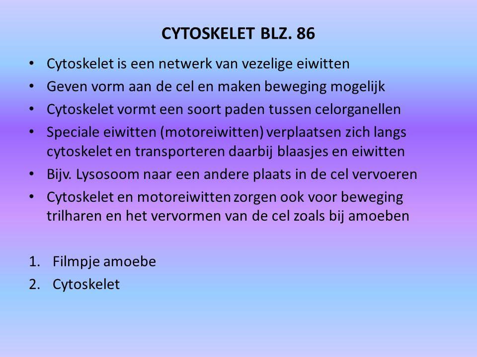 CYTOSKELET BLZ. 86 Cytoskelet is een netwerk van vezelige eiwitten Geven vorm aan de cel en maken beweging mogelijk Cytoskelet vormt een soort paden t