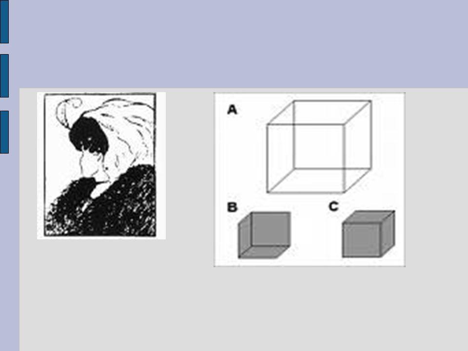 3 e dimensie: de interacties De contextueel therapeut onderkent het belang van communicatiepatronen en wederzijdse beïnvloedingsmechanismen tussen mensen.
