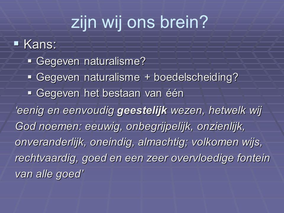 zijn wij ons brein?  Kans:  Gegeven naturalisme?  Gegeven naturalisme + boedelscheiding?  Gegeven het bestaan van één 'eenig en eenvoudig geesteli