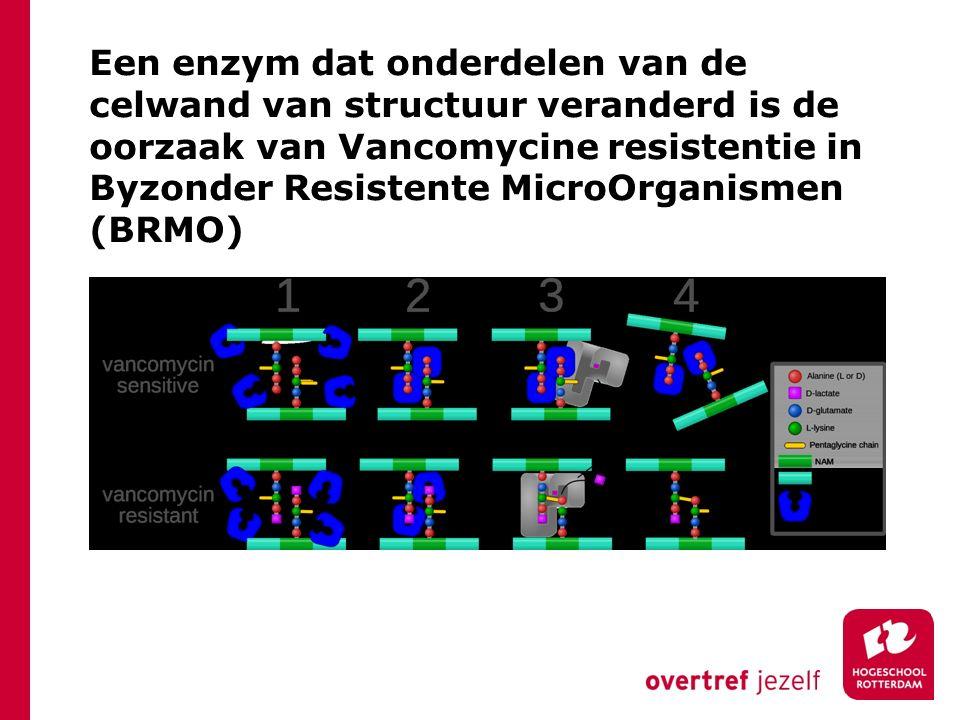 Een enzym dat onderdelen van de celwand van structuur veranderd is de oorzaak van Vancomycine resistentie in Byzonder Resistente MicroOrganismen (BRMO