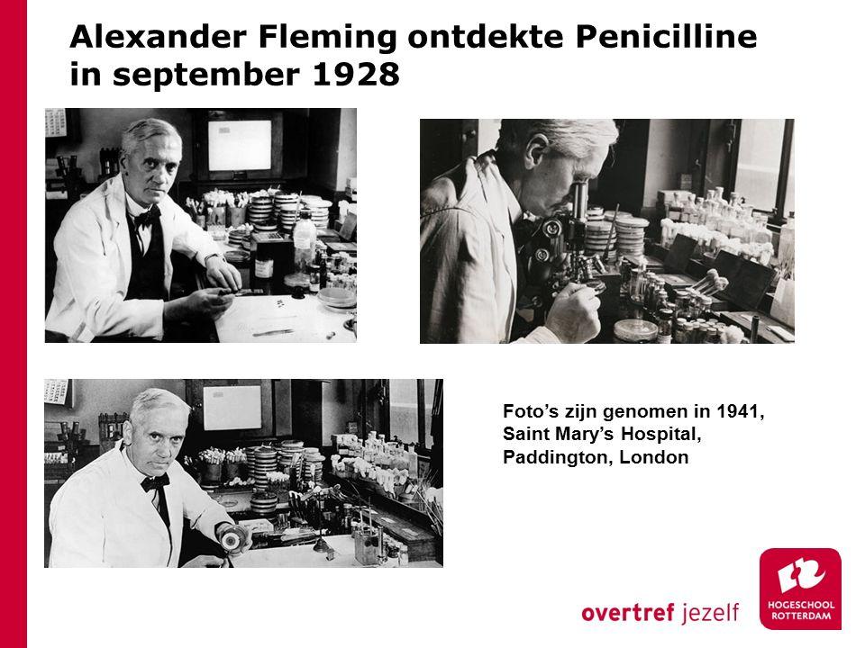 Alexander Fleming ontdekte Penicilline in september 1928 Foto's zijn genomen in 1941, Saint Mary's Hospital, Paddington, London