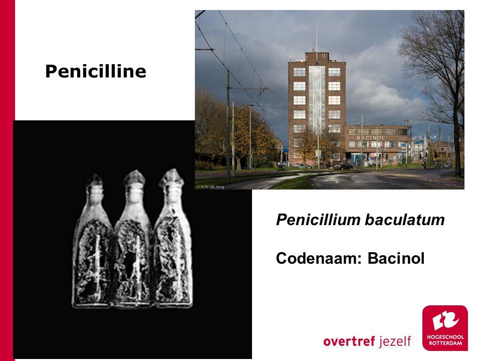 Penicilline Penicillium baculatum Codenaam: Bacinol