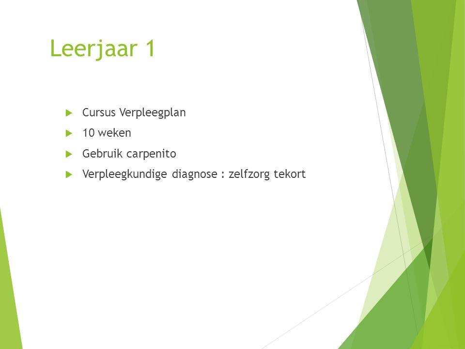 Leerjaar 1  Cursus Verpleegplan  10 weken  Gebruik carpenito  Verpleegkundige diagnose : zelfzorg tekort