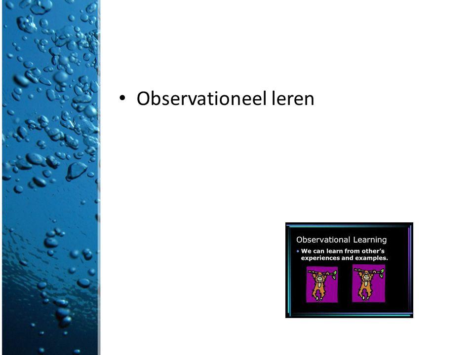 Observationeel leren