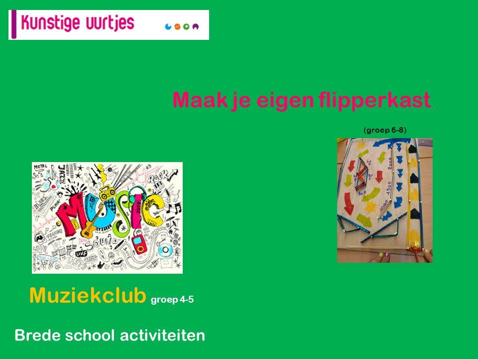 Maak je eigen flipperkast (groep 6-8) Muziekclub groep 4-5 Brede school activiteiten
