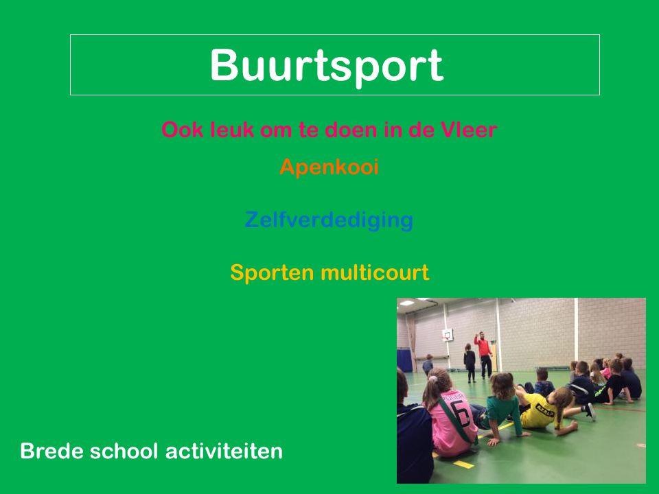 Brede school activiteiten Buurtsport Ook leuk om te doen in de Vleer Apenkooi Zelfverdediging Sporten multicourt