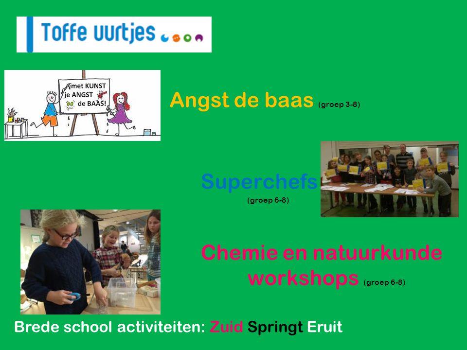 Brede school activiteiten: Zuid Springt Eruit Cupcakes versieren.
