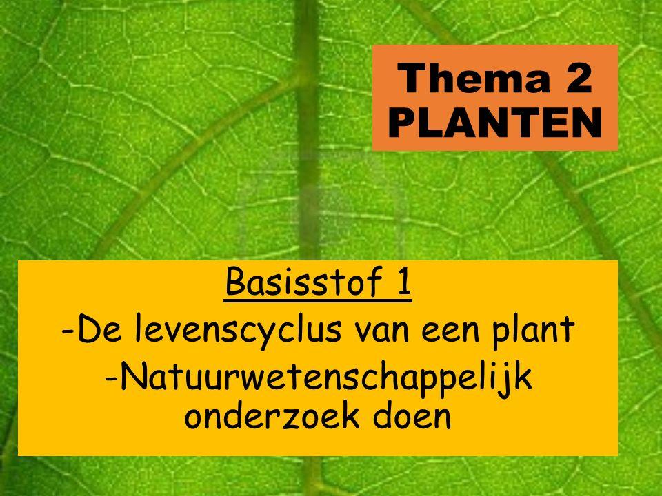 Iets weten over planten Zonder (de fotosynthese van) planten zouden wij niet kunnen leven Je eet iedere dag planten: weten wat je eet.