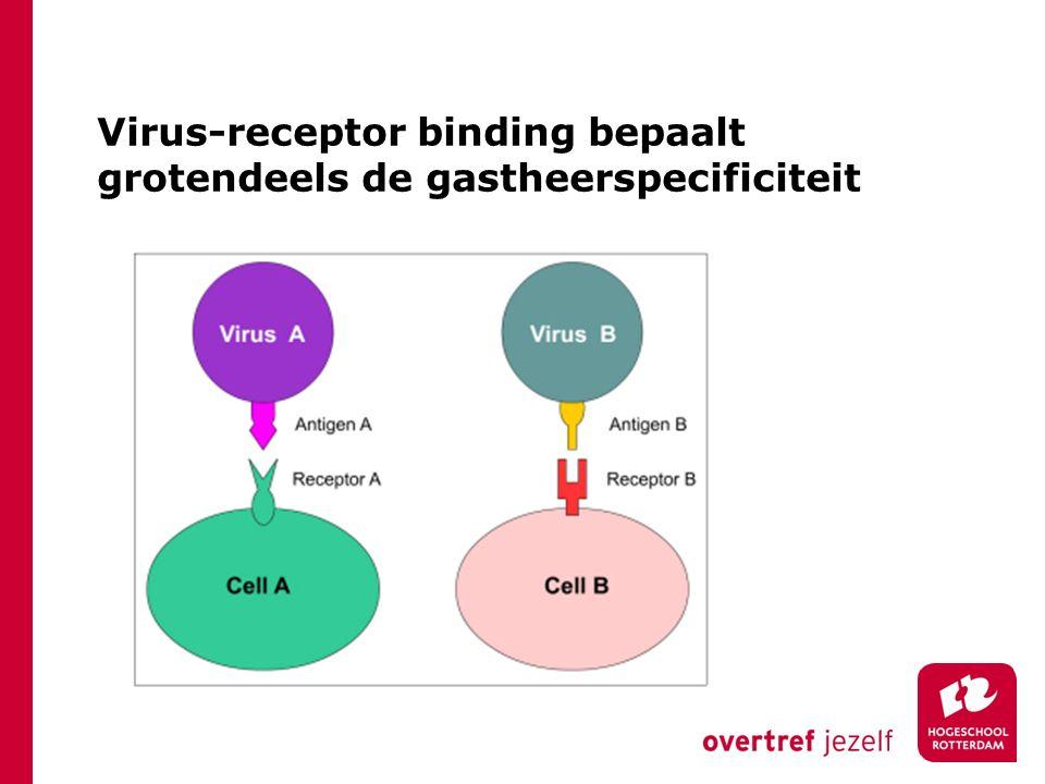 Virus-receptor binding bepaalt grotendeels de gastheerspecificiteit