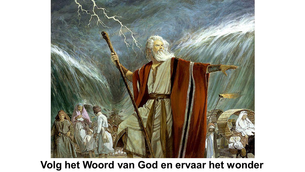 Volg het Woord van God en ervaar het wonder