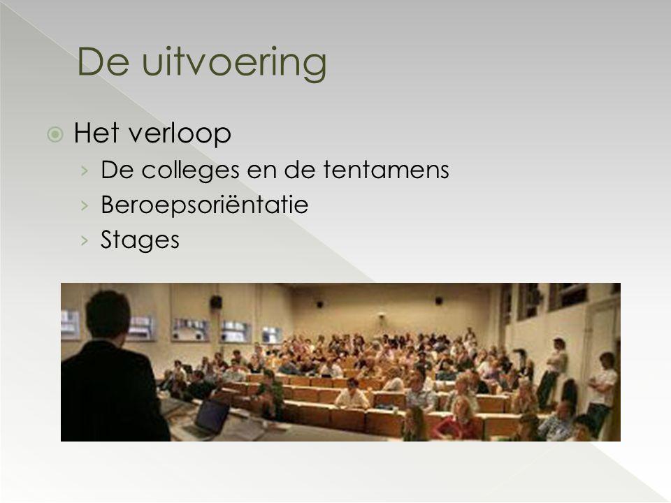  Het verloop › De colleges en de tentamens › Beroepsoriëntatie › Stages De uitvoering