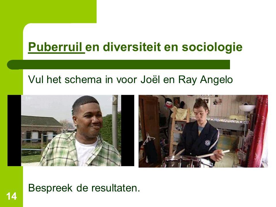 Puberruil Puberruil en diversiteit en sociologie Vul het schema in voor Joël en Ray Angelo Bespreek de resultaten.