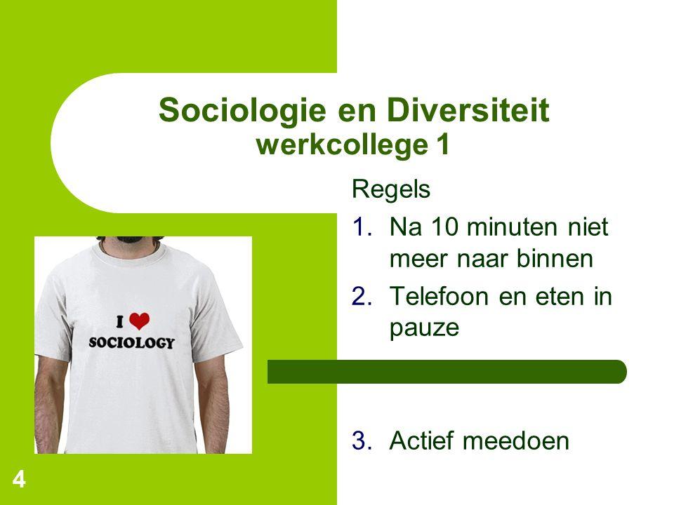 4 Sociologie en Diversiteit werkcollege 1 Regels 1.Na 10 minuten niet meer naar binnen 2.Telefoon en eten in pauze 3.Actief meedoen