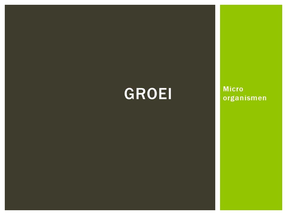 Micro organismen GROEI