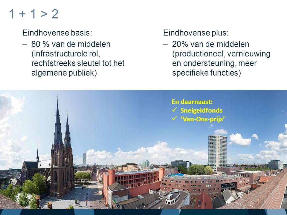 Eindhovense basis: –80 % van de middelen (infrastructurele rol, rechtstreeks sleutel tot het algemene publiek) 1 + 1 > 2 Eindhovense plus: –20% van de middelen (productioneel, vernieuwing en ondersteuning, meer specifieke functies) En daarnaast: Snelgeldfonds 'Van-Ons-prijs'