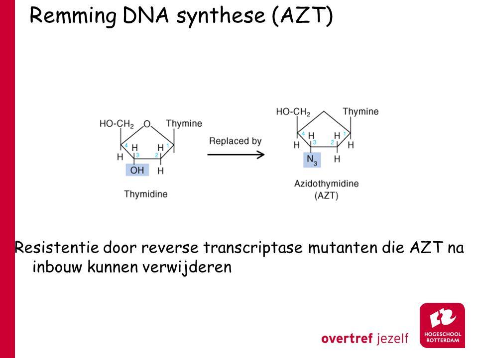 Remming DNA synthese (AZT) Resistentie door reverse transcriptase mutanten die AZT na inbouw kunnen verwijderen
