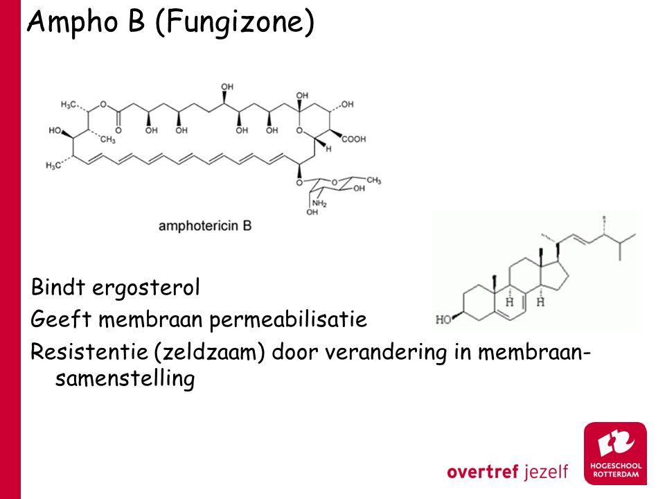 Ampho B (Fungizone) Bindt ergosterol Geeft membraan permeabilisatie Resistentie (zeldzaam) door verandering in membraan- samenstelling
